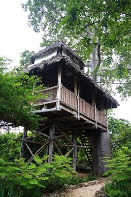 mafia island treehouse
